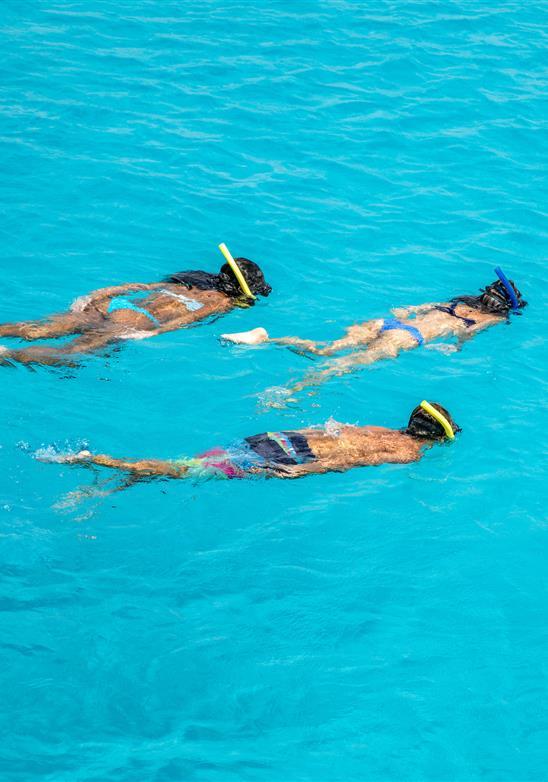 Bucee y practique snorkel en nuestras aguas cristalinas
